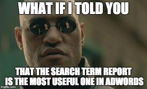 search term report