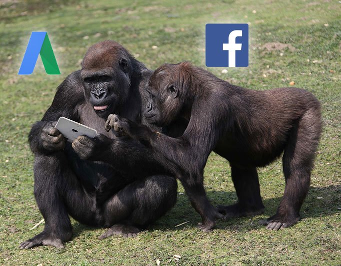 AdWords vs Facebook – the Two PPC Gorillas in the Room | Disruptive Advertising