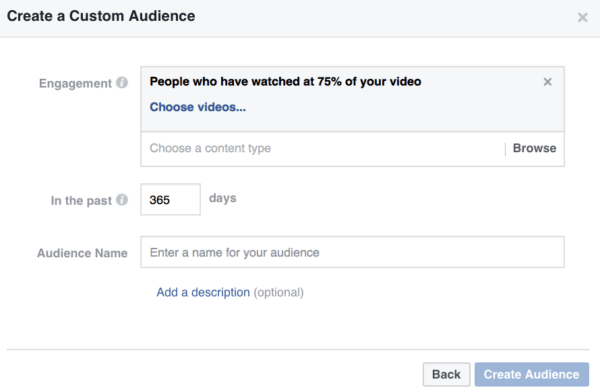 video views Facebook custom audience