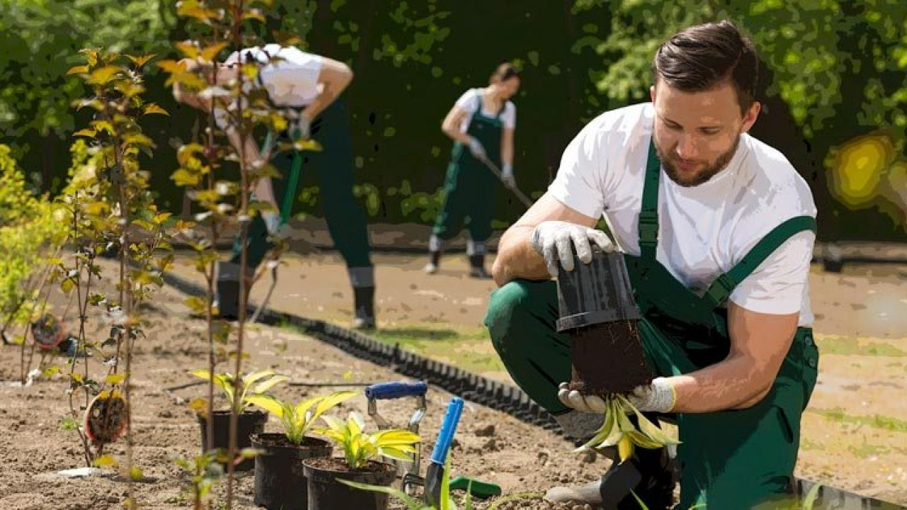 How To Get The Most Leads Out Of Your Landscaping Landing Page