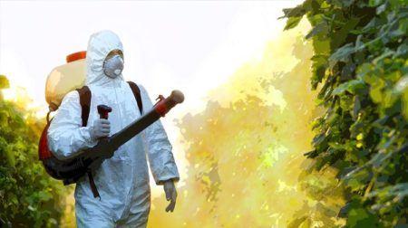 Pest Control PPC