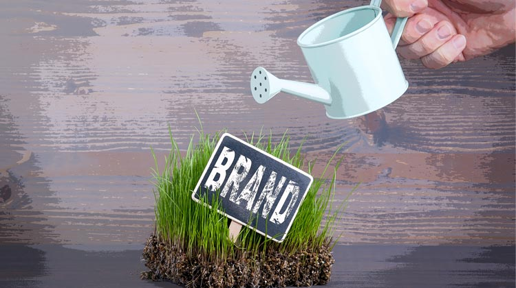 The Small Business's Guide to Branding | Disruptive Advertising